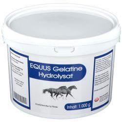 Equus Gelatine Hydrolysat