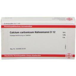 CALCIUM CARBONICUM Hahnemanni D 12 Ampullen