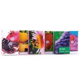 FRANK® Taschentücher Flora Pocket