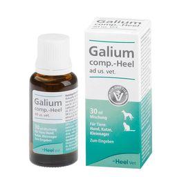 Galium comp.-Heel® ad us. vet. Tropfen