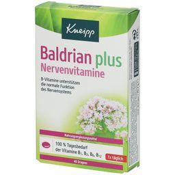 Kneipp® Baldrian plus Nervenvitamine