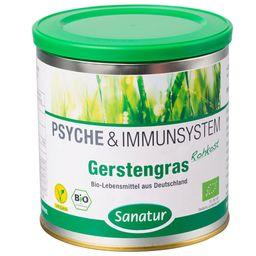Sanatur Gerstengras