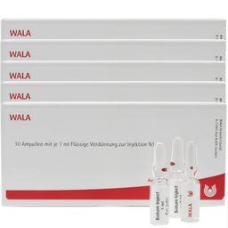 WALA® Gnaphalium Comp. Amp.