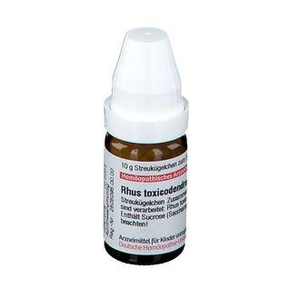 DHU Rhus Toxicodendron C4