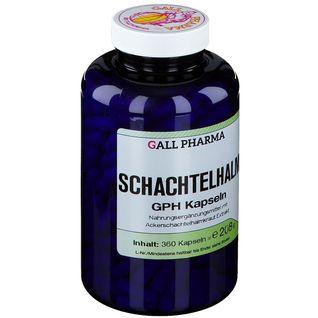 GALL PHARMA Schachtelhalm GPH