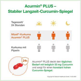 ACURMIN PLUS®+ Das Mizell-Curcuma