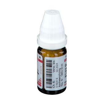 DHU Coccus Cacti D12