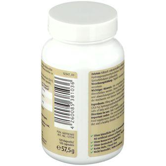 Ginkgo Biloba Kapseln 100 mg ZeinPharma