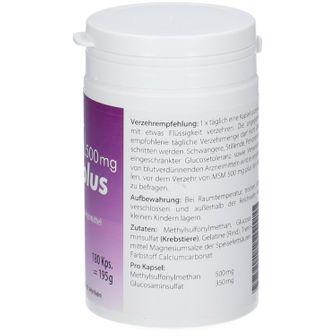 MSM 500 mg Plus
