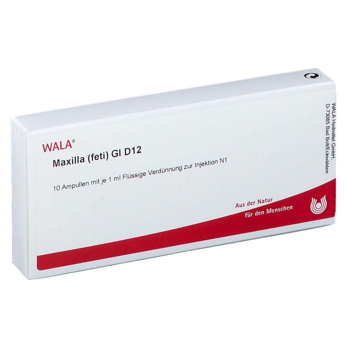 Wala® Maxilla feti Gl D12