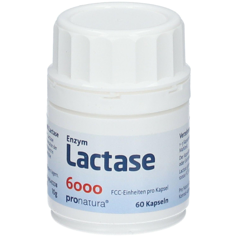 Enzym Lactase 6000 FCC Kapseln