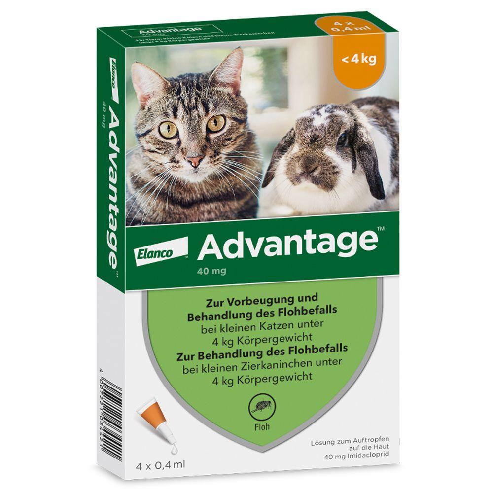 advantage® 40 mg für Katzen und Zierkaninchen bis 4 kg Körpergewicht