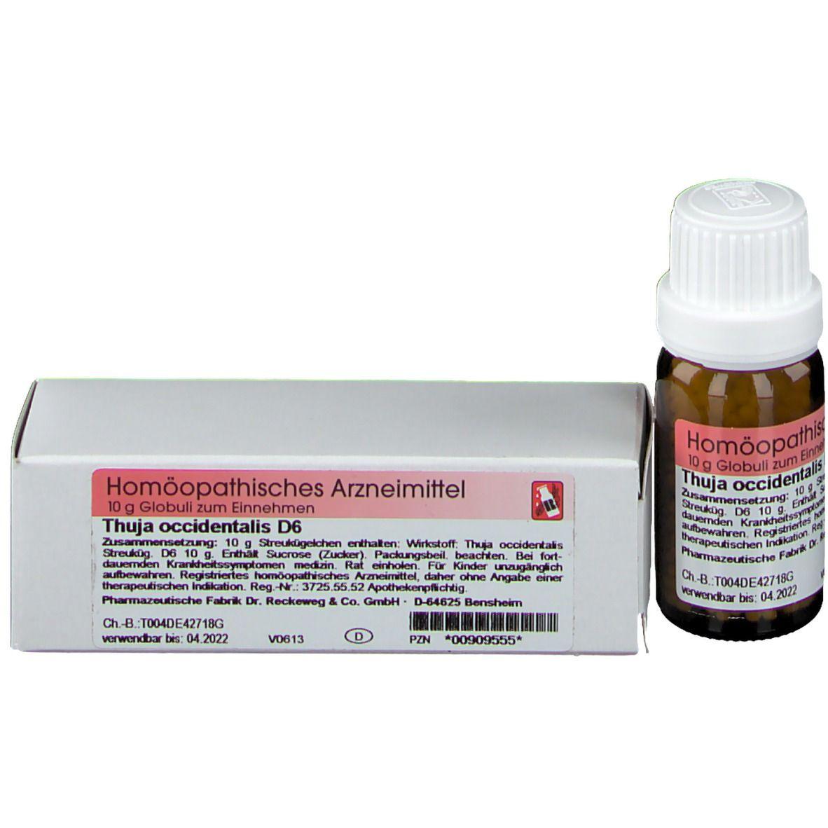Thuja D6 Impfung