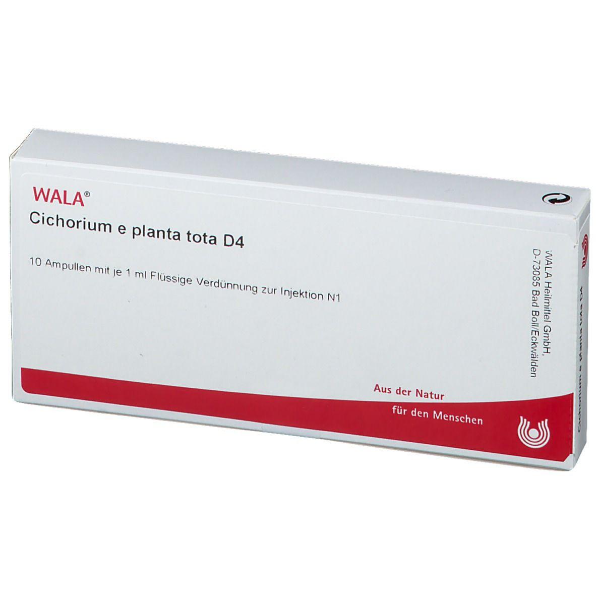 WALA® Cichorium e planta tota D 4